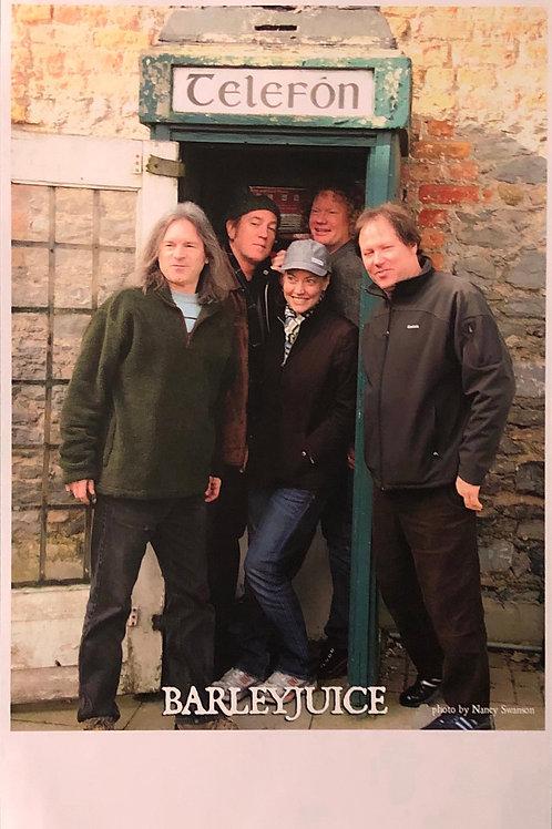 Barleyjuice -  Poster - Ireland Tour 2012
