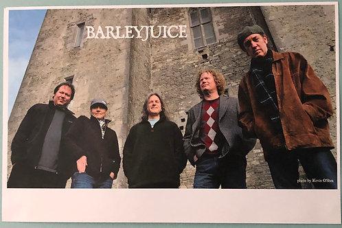 Barleyjuice -  Poster - Ireland Tour 2012 #2