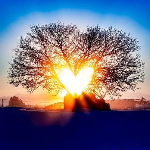Méditation de transmutation par la puissance du coeur