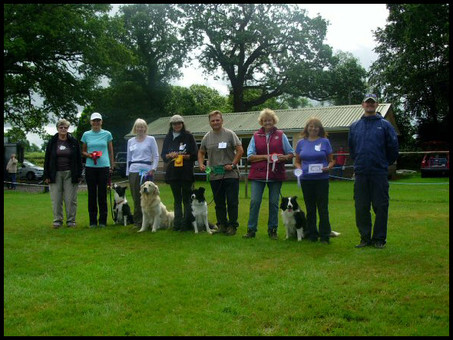 Obedience Show 2014