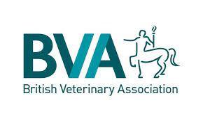 BVA Eye Testing Clinic
