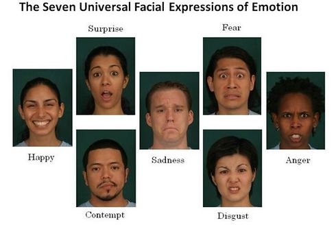Facial Expressions Picture.jpg