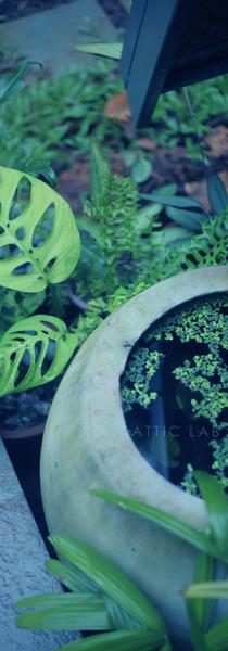 Attic Lab 06.jpg