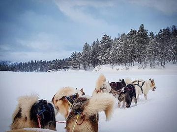 Idyllisk med lysere dager i Troms og Fje