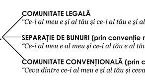 Regimul Matrimonial (conform Noului Cod Civil, Legea nr. 287/2009)