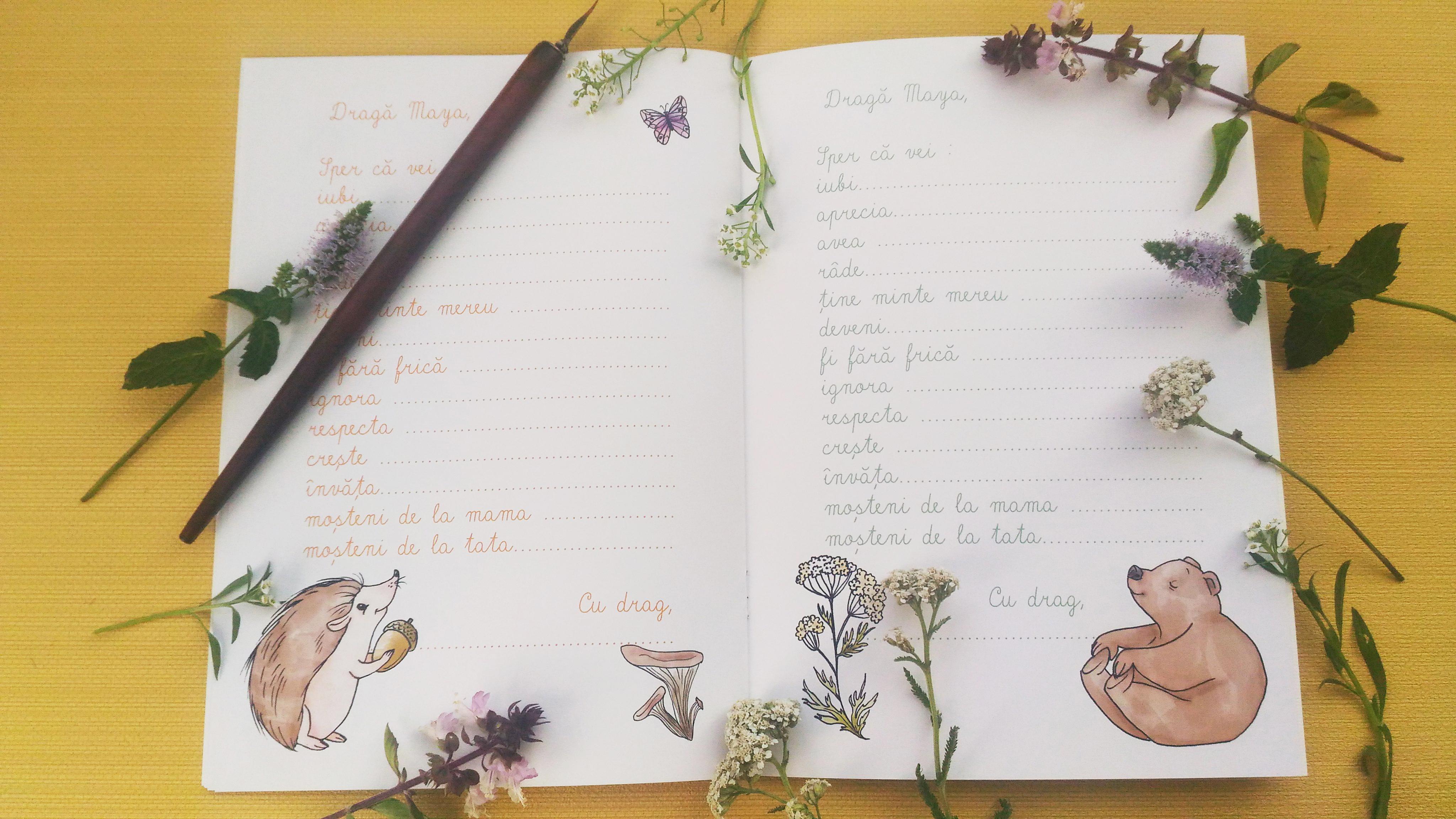 Album de Amintiri - interior5