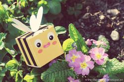 Cutie Albinuta