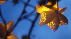 Lampion noaptea
