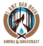 #feu #archaic #survivalskills #bushcraft #amadou #bivouac #camp #bushcraftcamp