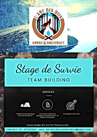 Plaquette Team Building ART DES BOIS Team Building, Cohésion d'équipe :  Mettez votre équipe en situation afin de révéler les talents de chacun.  Ténacité, écoute, entraide, prises de décisions...