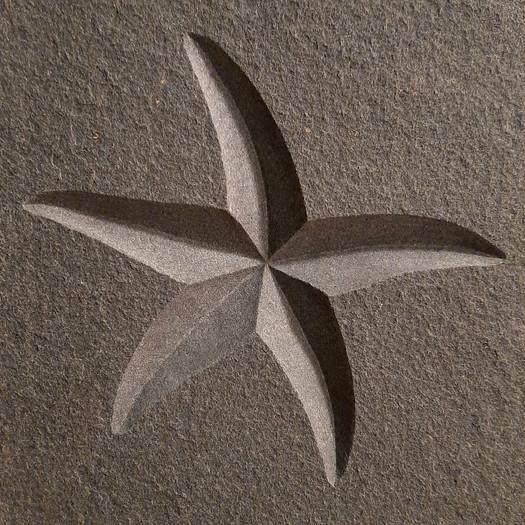 starfish carving in bluestone.jpg