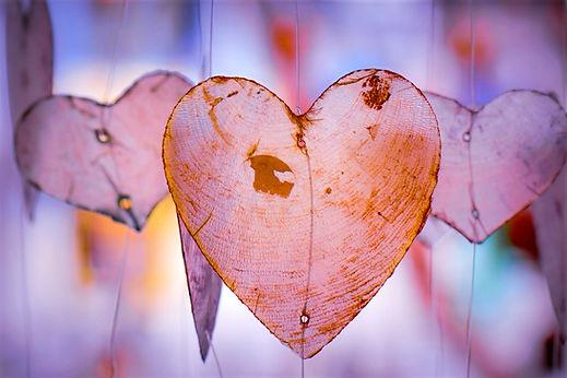 heart-4315984_1920_edited.jpg