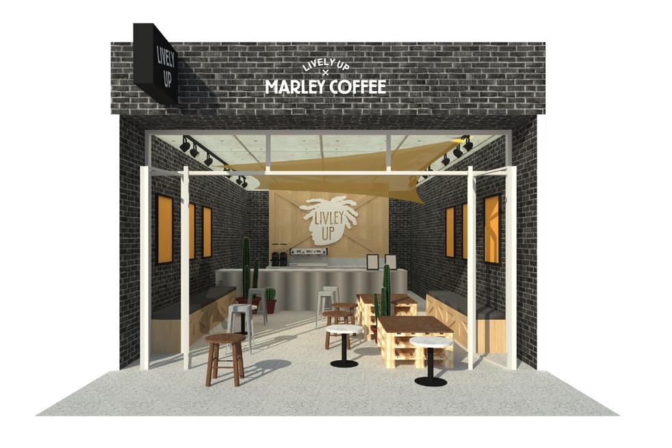 marley-20.jpg