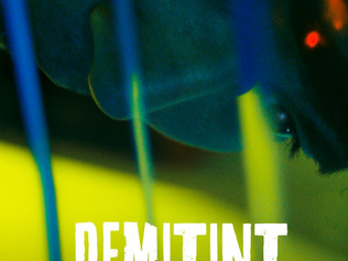 Demitint|生死五日