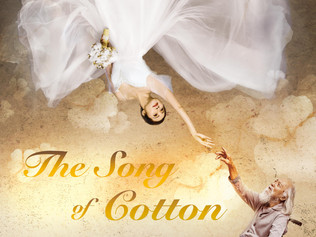 The Song of Cotton|盛先生的花儿