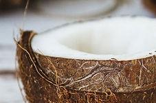 coconut-oil-handbook_edited.jpg