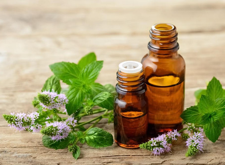 Where do essential oils come from?