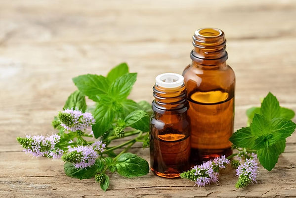 essential-oils-such-as-peppermint-are-go