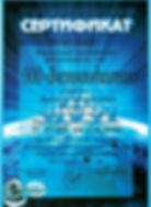 Сертификат ГПЗ-34_16.jpg