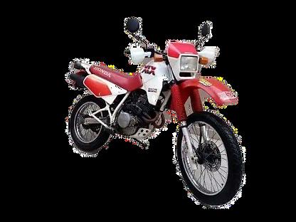 Samuka Motos XLX 350X_edited.png