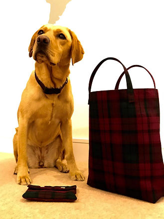 Lena modelling her rangea beautiful Red / Green Tartan