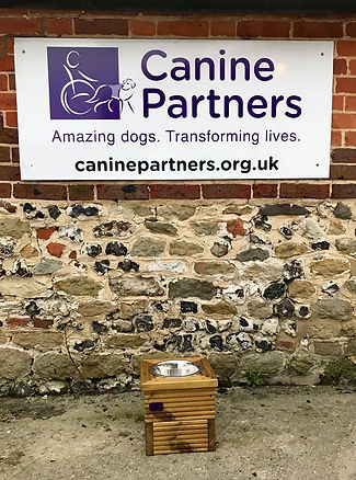Purple Dogs 2018 support Canine Partners who transform the life of disabled adults through their amazing dogs.