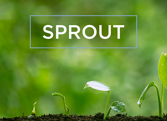 The Sprout Package