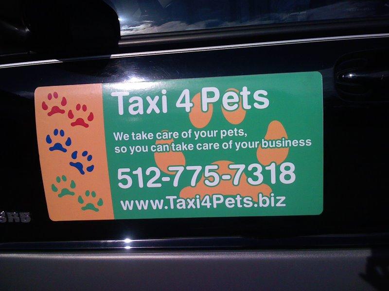 Taxi 4 Pets - Malea Morella - lk11943.JPG