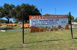 Pumpkin Patch Banner