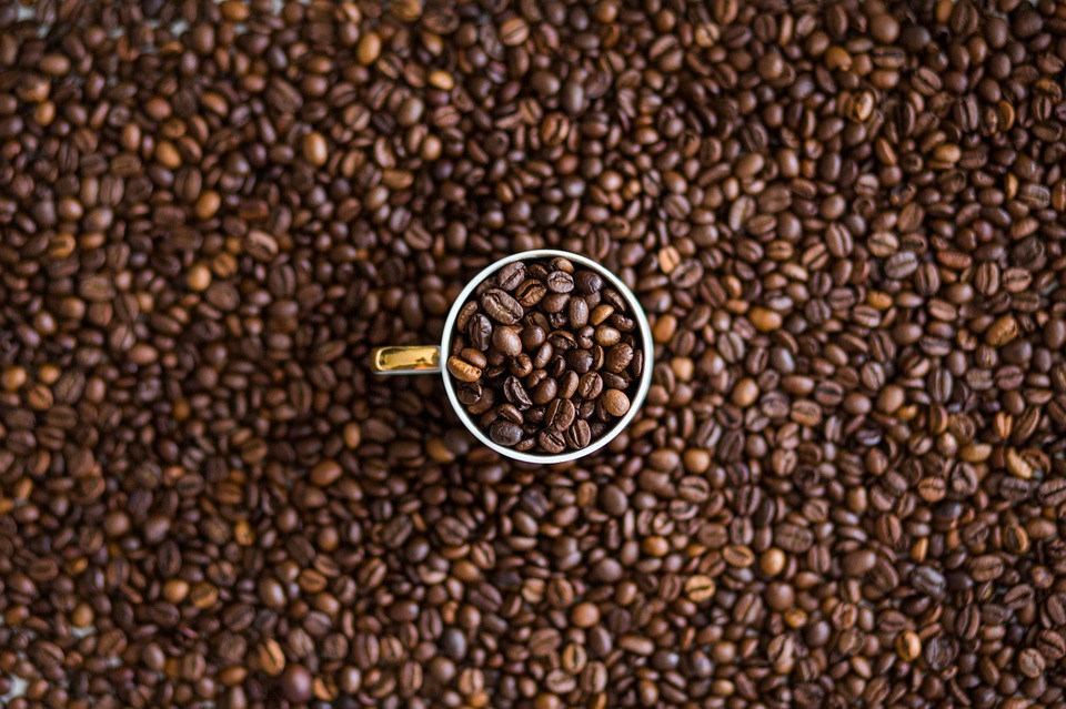 Kaffeevielfalt geniessen