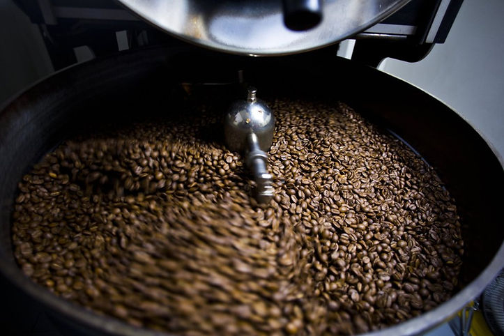 El Amanecer Kaffee kaufen frisch geröstet
