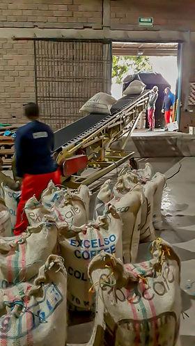 El Amanecer Kaffee kaufen direkt exportiert