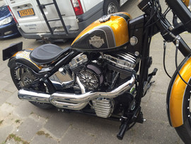 Anonymous Softail