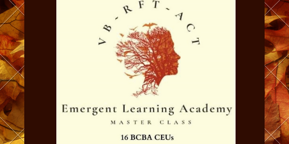 VB-RFT-ACT Master Class