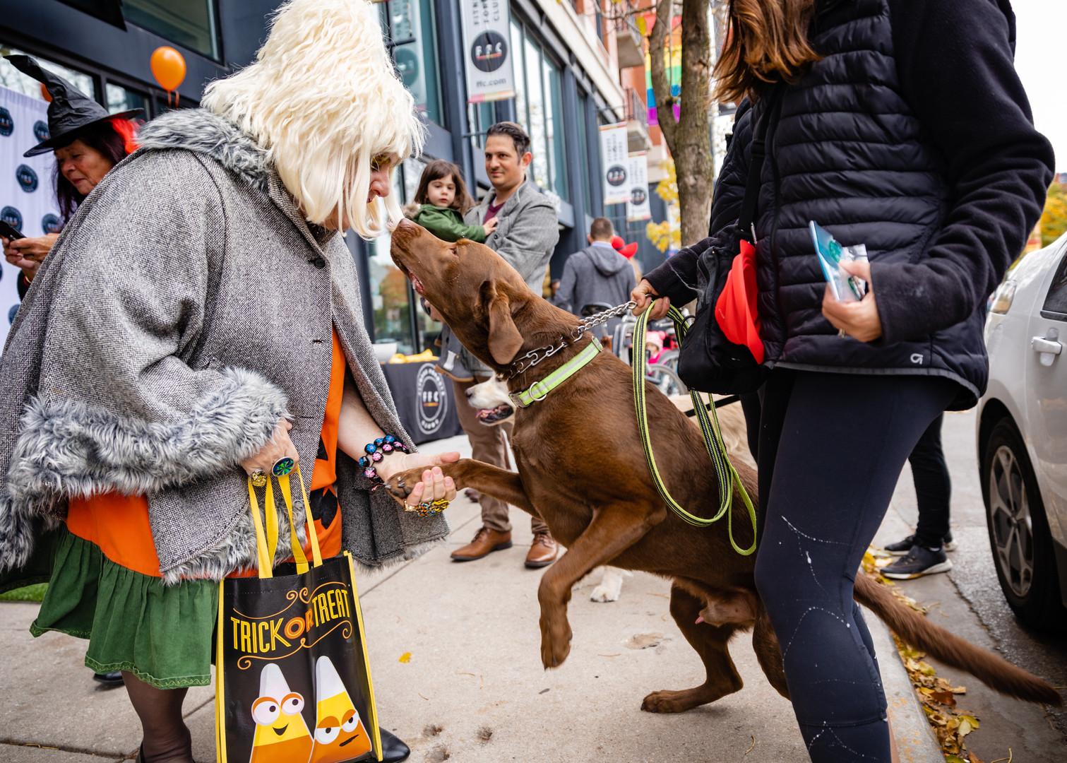 2019 Lakeview Halloween Pup Crawl