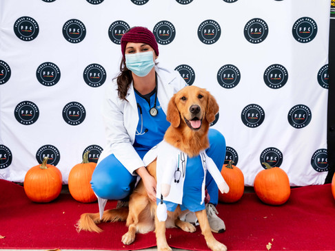 Lakeview Halloween Pup Crawl 2020
