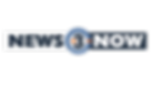 N3N LOGO LEGAL ID PLATED USE (1).png