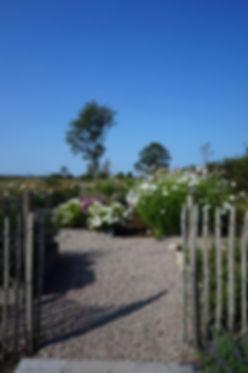 ingång trädgård.jpg