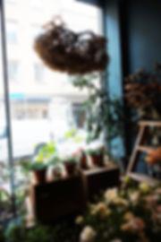 florista23.jpg