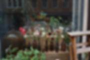 florista16.jpg
