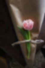 florista31.jpg