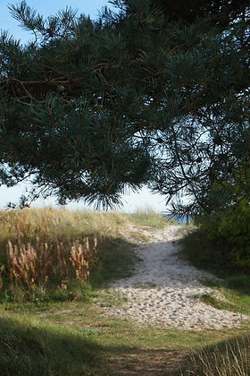 by the beach in south of sweden.jpg