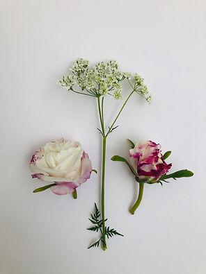 rosesetc.jpeg