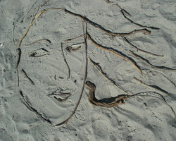 Sand art 2008 , my favorite thing about these projects is when I leave them on the beach and the wav