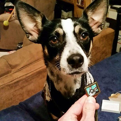 THIS MAKES ME SQUEAL WITH JOY! My puppy portrait necklace with the real deal! Get your own custom fu
