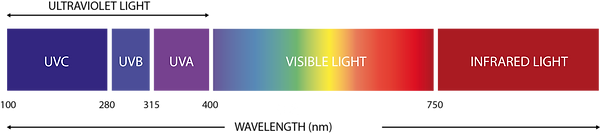 LIGHT-BAR (english).png