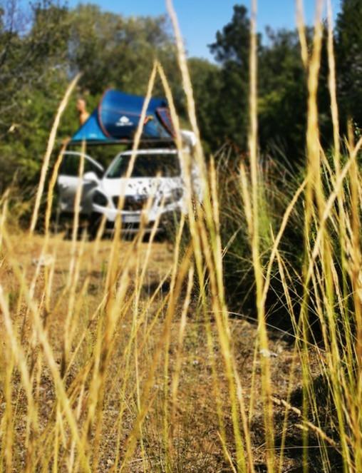 campeggio libero a Talamone, Toscana tra campo di grano e alberi