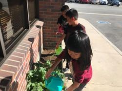 Teaching Garden Project!