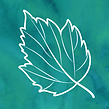 fall special icon.png
