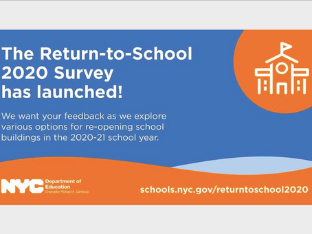Return to School Survey 2020